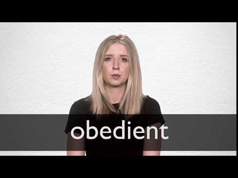 Obedient definition and meaning   Collins English Dictionary