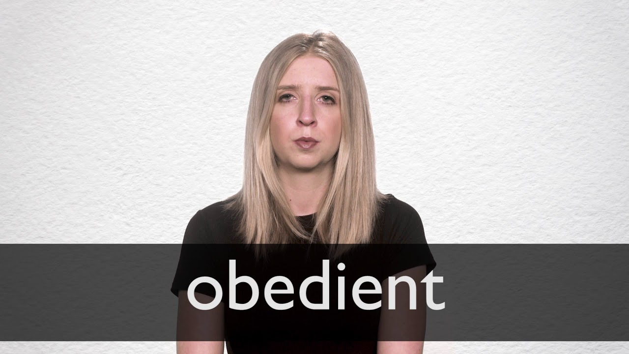 Obedient definition and meaning | Collins English Dictionary