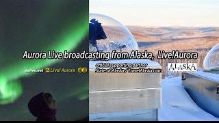 [Live]高画質版・オーロラ生中継 from アラスカ / aurora live broadcasting from Fairbanks/Alaska Fairbanks