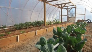 Geothermal Greenhouse Garden: March 25, 2015