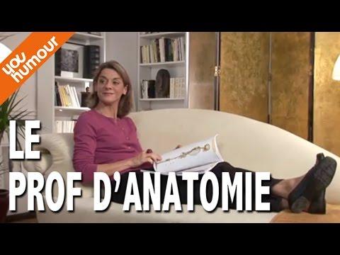 Victoire chez le psy, L'anatomie