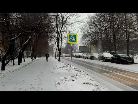 Москва 1853 Ереванская улица зима день