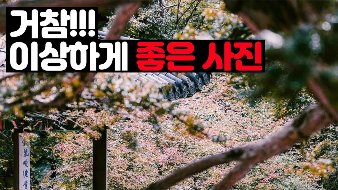 김경만 감독의 사진학개론 멤버 가입 후 멤버 전용 동영상 보는 법과 인스타그램 팔로우 문제