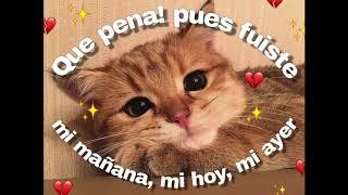 Quisiera - Daniel, Me Estás Matando ft Silvana Estrada