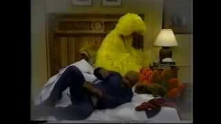 Sesame Street - Big Bird Sleeps at Gordon & Susan