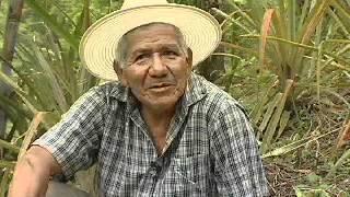 La paz del coronel. Aquilino Díaz (2012)