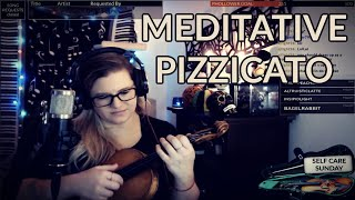 Meditative Pizzicato ON THE VIOLIN - Phunk Phiddler