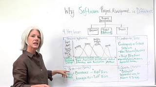 Software Project Management - Why it's Different!