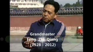Feng Zhi Qiang - Applications Hun Yuan Taiji