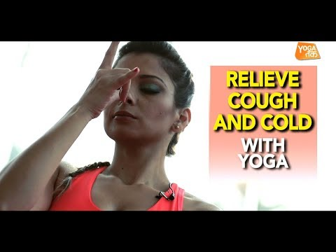 Yoga To Relief Cough And Cold | Anulom Vilom Pranayama | Yoga Tak