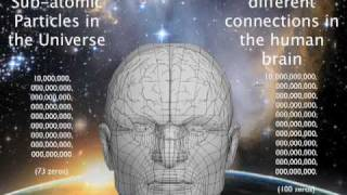The Human Brain & Cybernetics