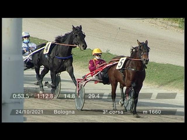 2021 10 24   Corsa 3   Metri 1660   Premio Lions 'we Serve' - Tr.cri