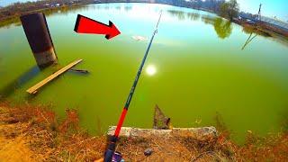 В МУТНОМ ОЗЕРЕ МОНСТРЫ ВОДЯТСЯ Рыбалка на спиннинг и донку Судак форель