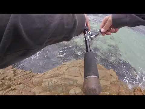 Rock Fishing, Forster