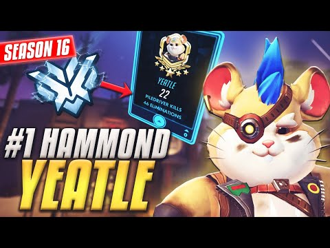 #1 HAMMOND in Overwatch 'Yeatle' Bullying the enemy team [S16 TOP 500]