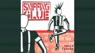 Sniffing Glue - Fuck MTV + Punx in the night