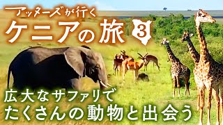 ケニアのサファリに降り立ったつぼわとかんべ。ライオンやゾウ、キリン...