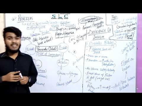 Endocrine Glands: Part V: Pancreas Urdu/Hindi By Sir Dildar Ali