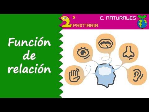 ciencias-de-la-naturaleza.-2º-primaria.-tema-1.-función-de-relación