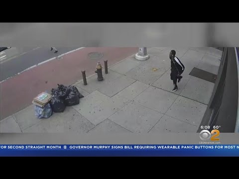 New Video Shows Brooklyn Shooting