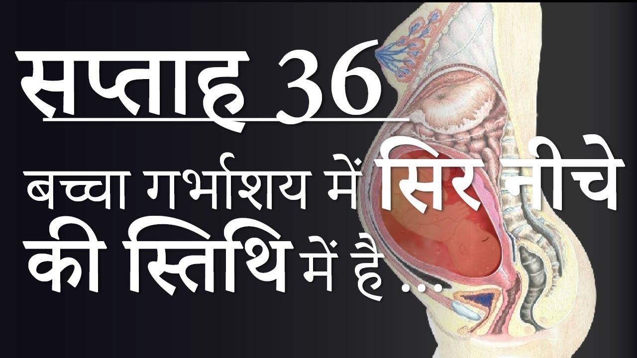Pregnancy | Hindi | Week by Week - Week 36 | गर्भावस्था - सप्ताह 36 - Month  9