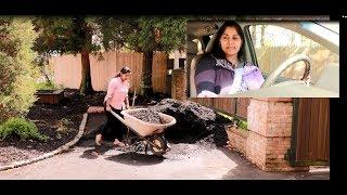 ഗാർഡൻ ക്ലീനിങ് പിന്നേ കുറച്ചു ഷോപ്പിംഗ് || Gardening & shopping