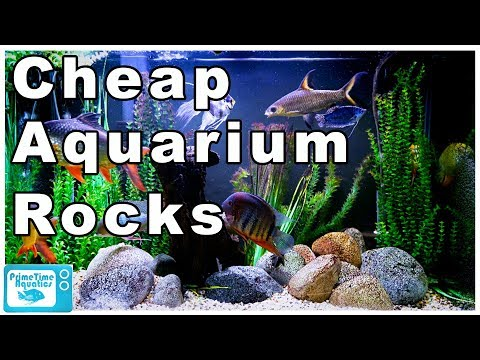 Stop Wasting Money On Aquarium Rocks! Cheapest Way To Buy Rocks For Your Fish Tank