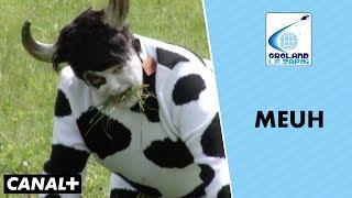 Il décide de changer de sexe pour devenir une vache - Groland le Zapoï du 03/06 - CANAL +