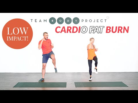 Low impact home cardio workout for ALL fitness levels