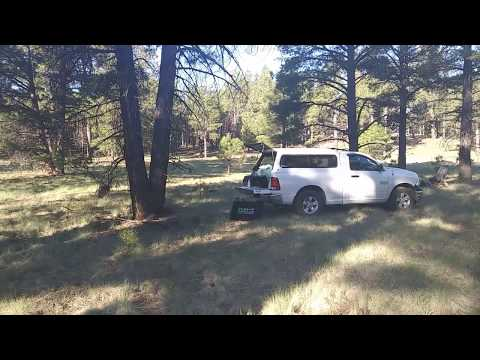 Camping Coconino National Forest