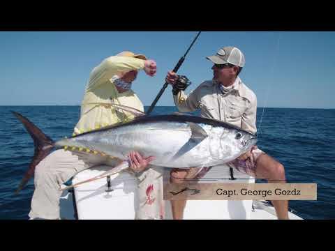 Reel Time Florida Sportsman - Tuna Tangle