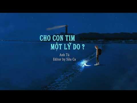 Cho Con Tim Một Lý Do - Anh Tú | MV Lyrics HD