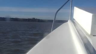suzuki dt65 outboard