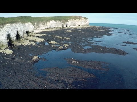 The 4 coastal processes of erosion with timeforgeography.co.uk