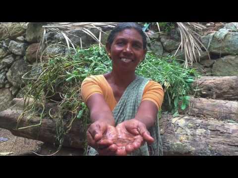 Anahata Ma - Grassroots Love to Heal the Earth