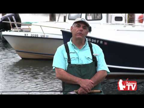 Fisherman TV Premiere Episode Striped Bass and Tog
