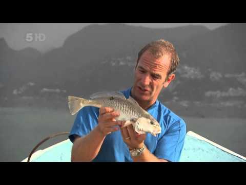 Robson Green Extreme Fishing Challenge Season 01 Episode 01 Part 3