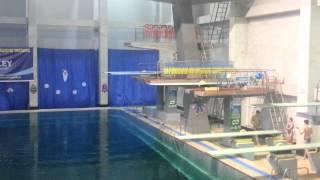 Прыжки в воду. Призёры Украины и Европы.