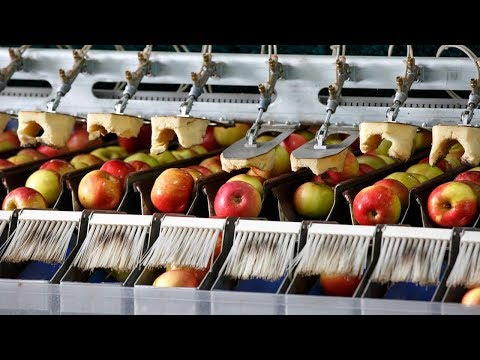 Crazy Food Processing Machines 2017 | Apples