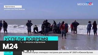Новости России и мира за 17 сентября - Москва 24
