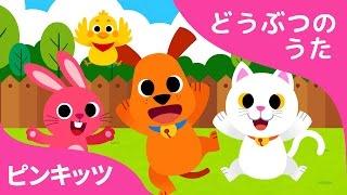 どうぶつのあかちゃん | Baby Animals | どうぶつのうた | ピンキッツ童謡