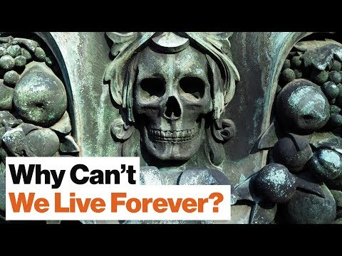 Why Don't Humans Live for More than 100 Years? | Physicist Geoffrey West