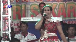 Wadon Selingan   Sintren Dangdut Putri Sekar Sari   Live Compreng Subang