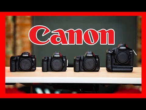 Which Canon DSLR Should You Buy: 1D X, 5D Mark III, 6D, 7D Mark II