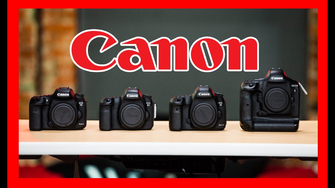 Which Canon DSLR Should You Buy: 1D X, 5D Mark III, 6D, 7D Mark II ...