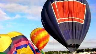 Royal County of Berkshire Show Newbury 2013 a few highlights