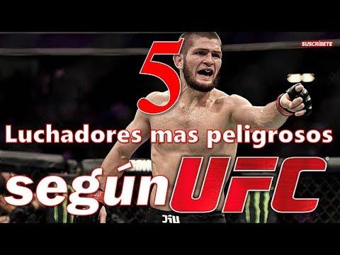 5 PELEADORES mas PELIGROSOS del mundo, libra por libra del 2019 según UFC MMA