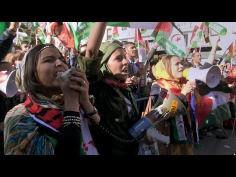 Life Is Waiting: Referendum and Resistance in Western Sahara (Trailer)
