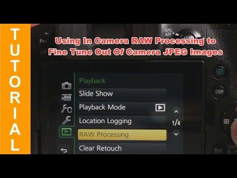 Panasonic Lumix Bridge Cameras - In Camera RAW Processing