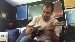 Flyswatter, Eels - acoustic Cover by Seffi
